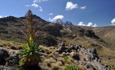 Výstup na Mt. Keňu