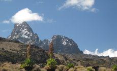Výstup na Mt. Keňu – vrcholy Bation a Nelion